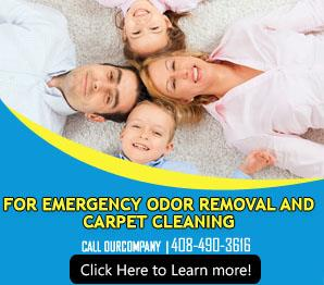 Contact Us | 408-490-3616 | Carpet Cleaning Los Gatos, CA